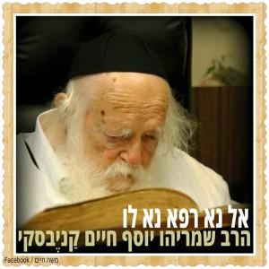 הרב קנייבסקי