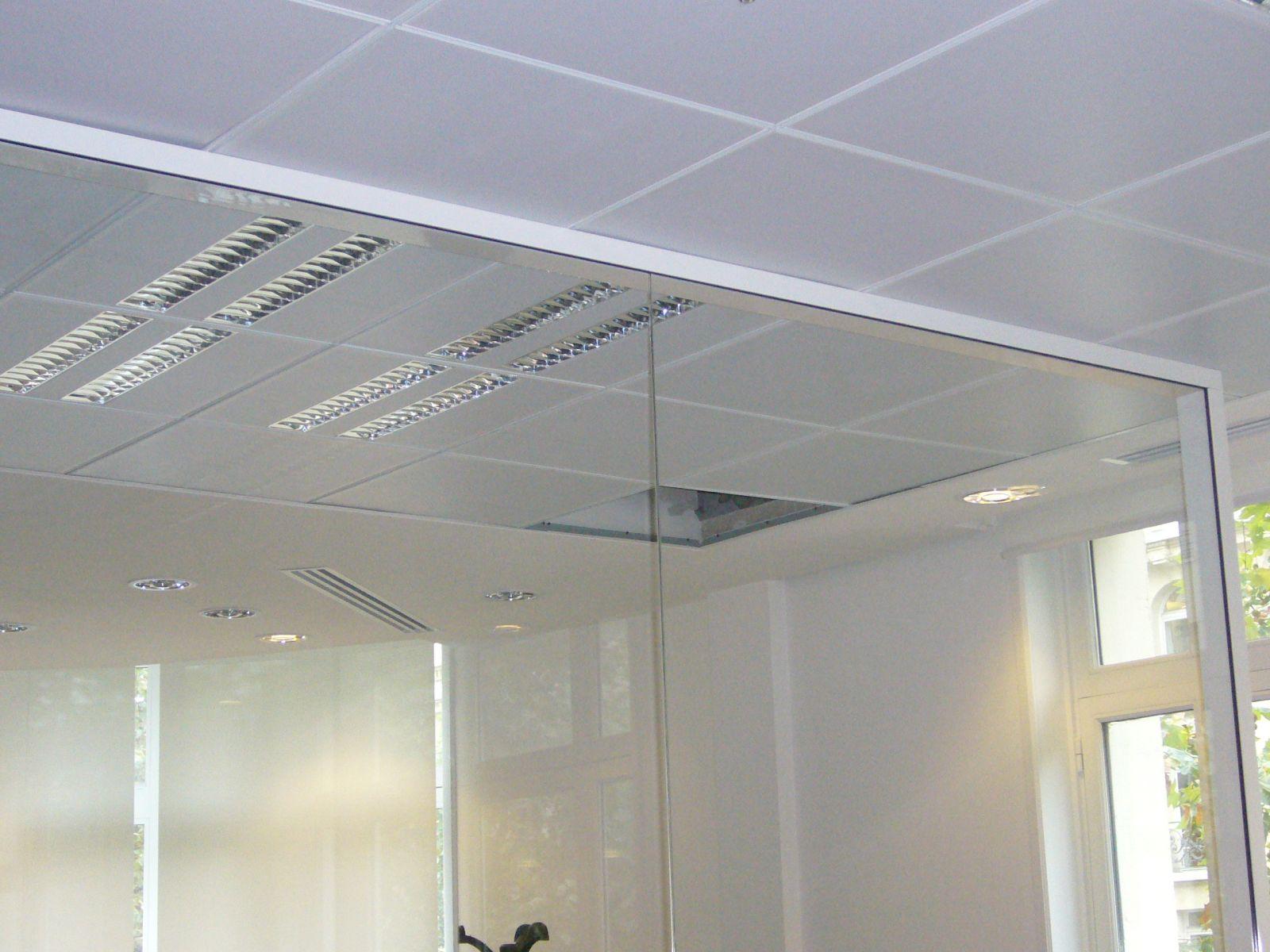 Faux Plafond Bureau Isolation Ides