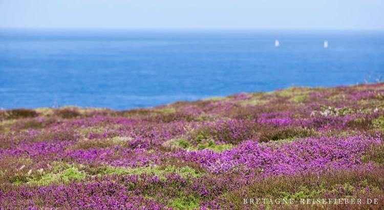Wellness in der Bretagne