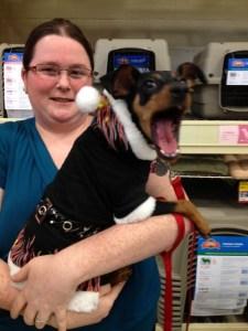 PetSmart In-Store, Manassas, VA