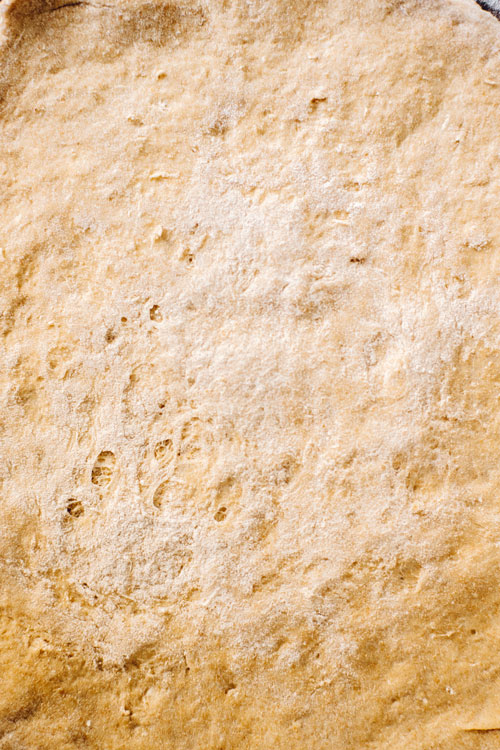 close up of unbaked pizza dough