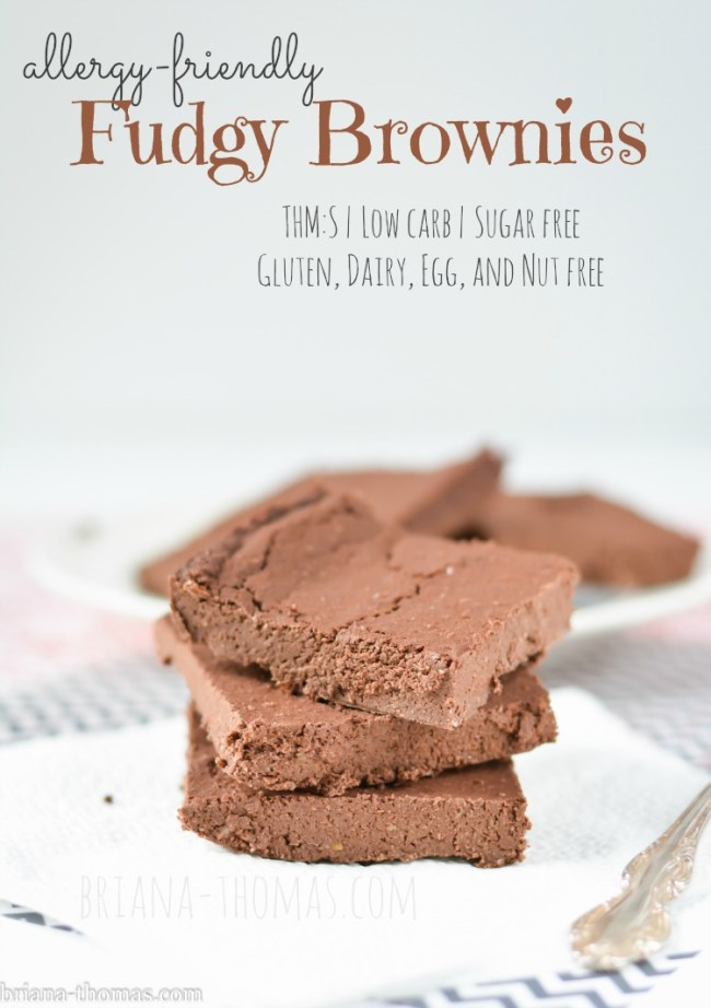 Allergy Friendly Fudgy Brownies