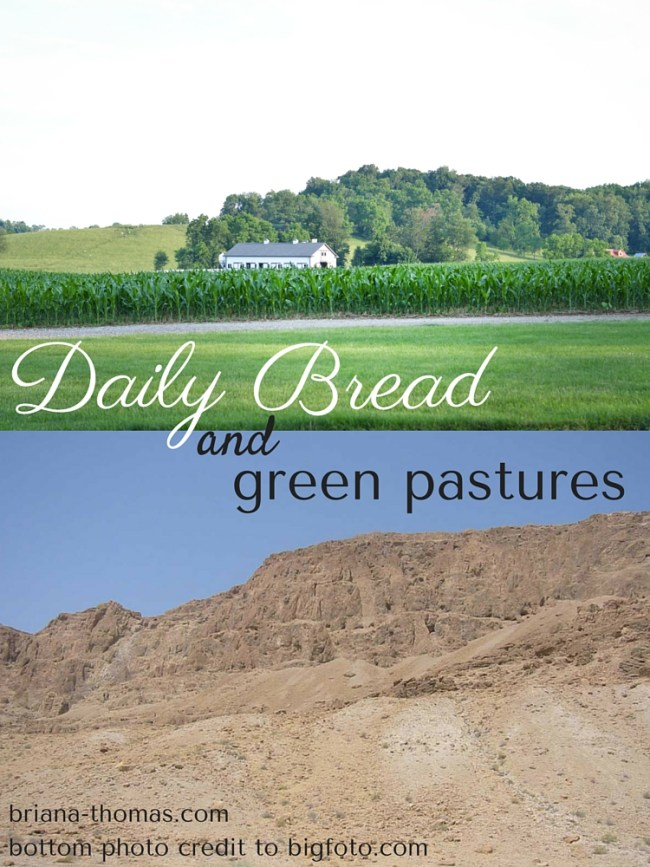 Daily Bread and Green Pastures