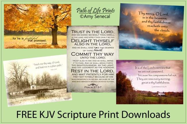 Path of Life Prints