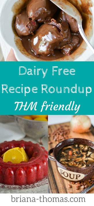 Dairy Free Recipe Roundup