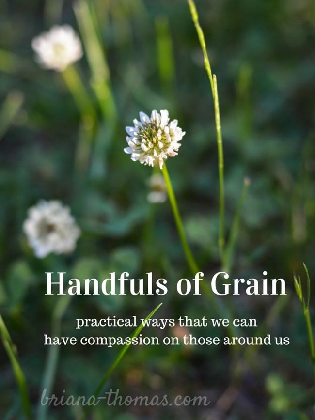Handfuls of Grain