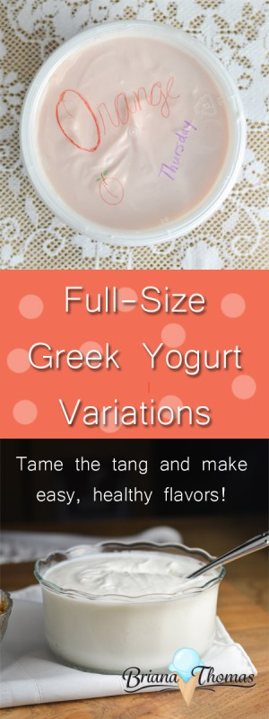 Check out this post to get recipes for four easy full-size Greek yogurt variations. I love to keep these on hand for a quick snack. THM friendly, low carb