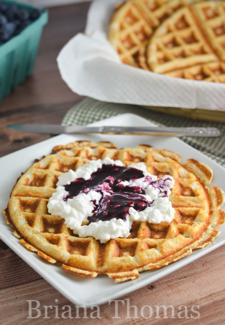 Need fresh breakfast inspiration? Check out this post for a list of low-carb waffle recipes (including a picture of each)! THM:S, sugar-free