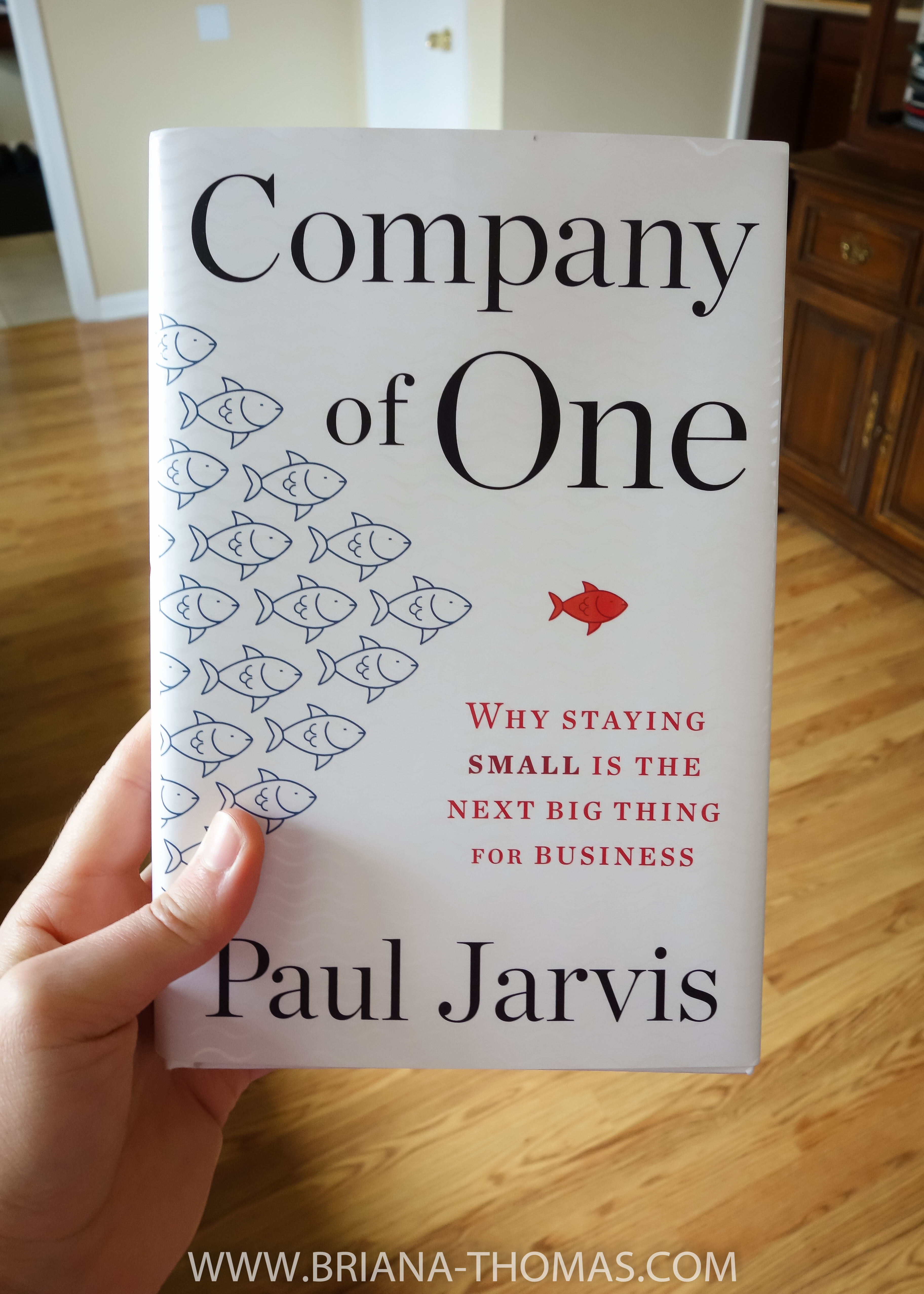 Company of One book, by Paul Jarvis