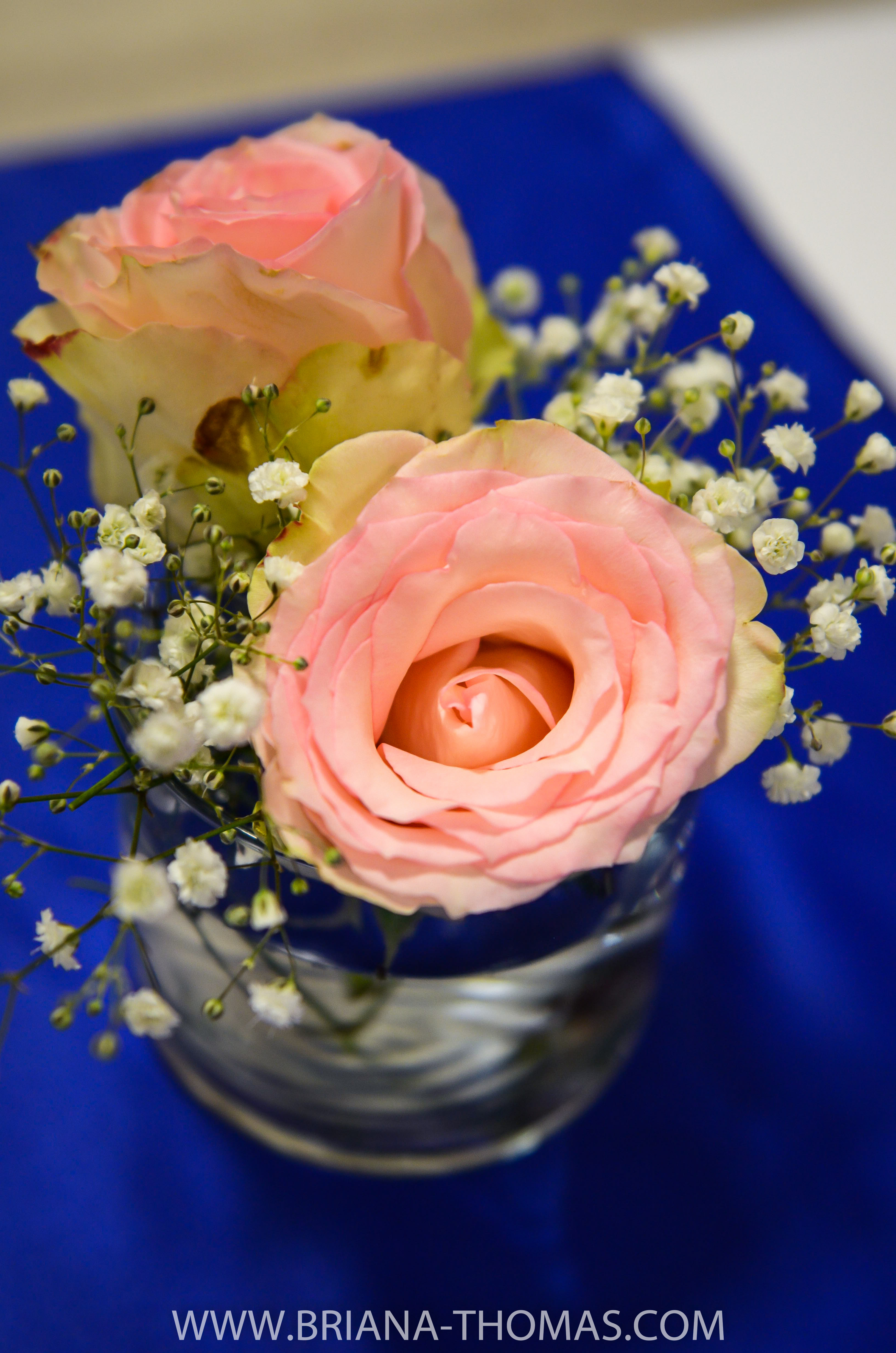 Ryan & Briana: Wedding Reception Singing