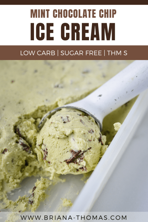 Low Carb Mint Chocolate Chip Ice Cream - THM S