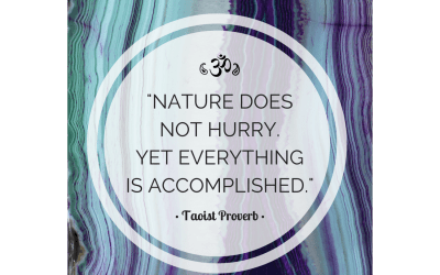 Taoist Proverb