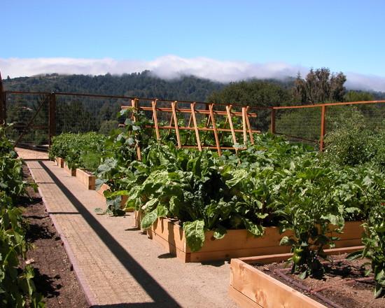 Portola Valley Kitchen Garden (San Francisco)