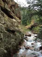 Bear Creek on Palmer Loop Trail