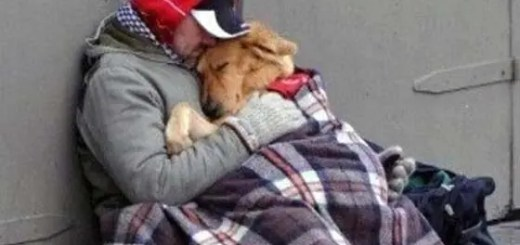 A homeless man and his dog