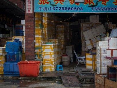 Seafood Market, Guangzhou, China (IMG_1614)