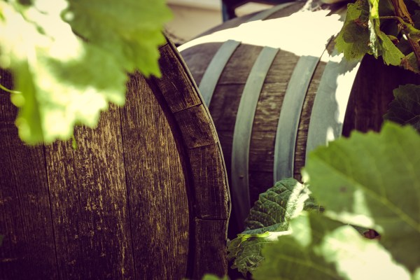 wine barrels | photograph by Brian J. Matis