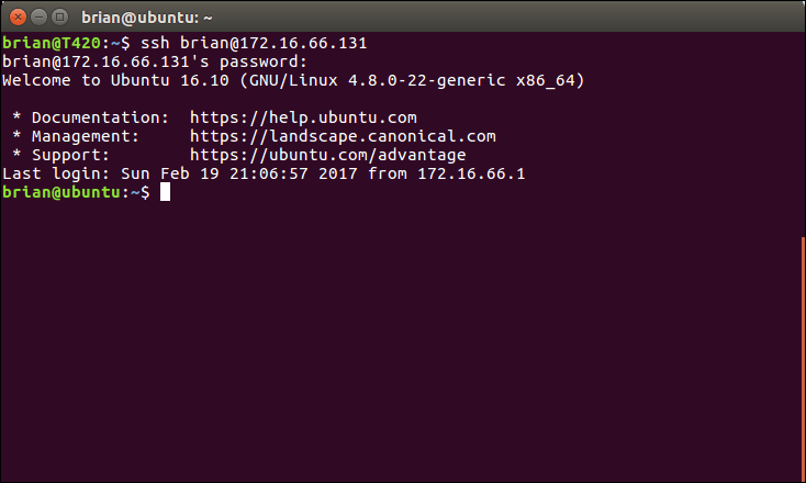 Build a custom Linux Router image for UNetLab and EVE-NG