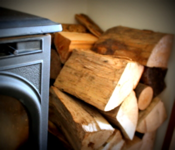 Wood Burning Stove - Brian Pask seasoned and kiln-dried logs: Ryedale