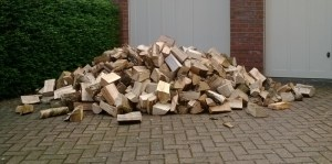 A single load of logs from Brian Pask Logs