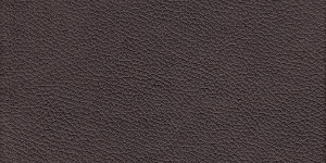 Leather #3015