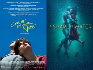 Call Me By Your Name Shape of Water