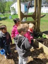 spring planting 2