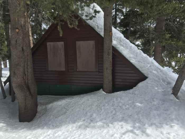 woods lake cabins