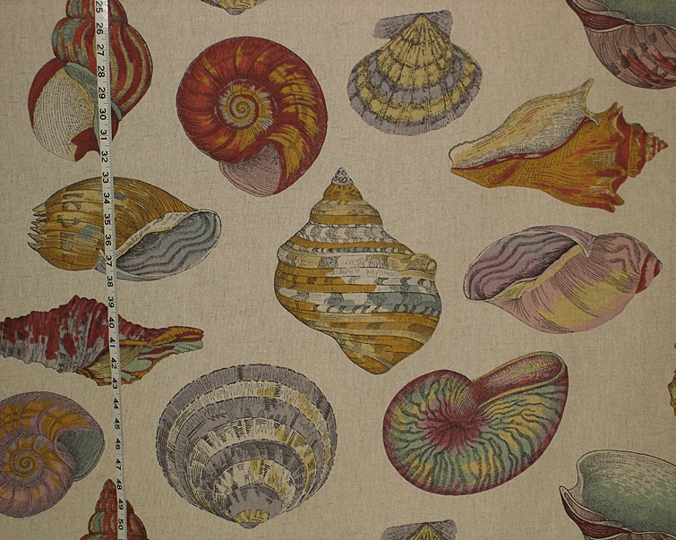 Seashell Fabric Nautilus Tan Toile From Brick House Fabric Novelty Fabric