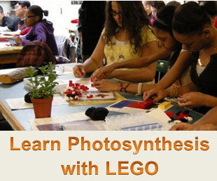 link to photosynthesis activity