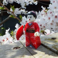 Hanami Photoshoot with the Lego Geisha