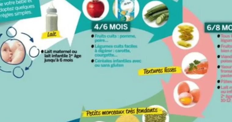 Alimentation par âges
