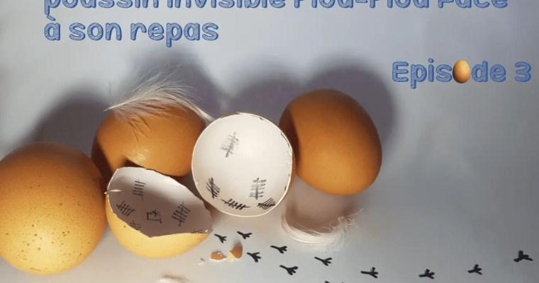 LES FOLLES AVENTURES DU POUSSIN PIOU – EPISODE 3