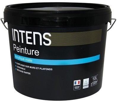 Peinture Interieure Murs Et Plafonds Acrylique Mat Blanc 10 L Intens Bricoman