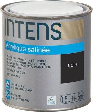Peinture Interieure Multi Supports Acrylique Monocouche Satin Noir 0 5 L Intens Bricoman