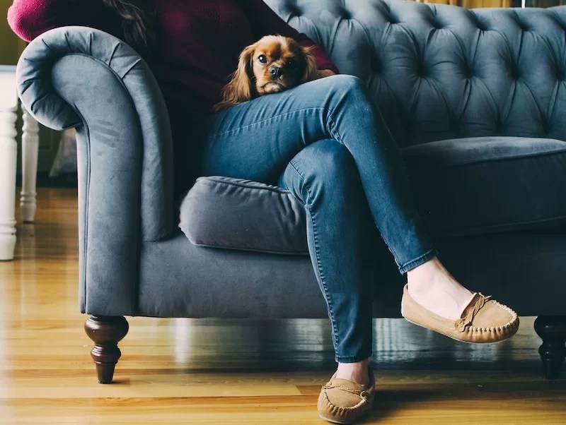 claves para comprar un sofá