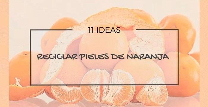 reciclar pieles de naranja
