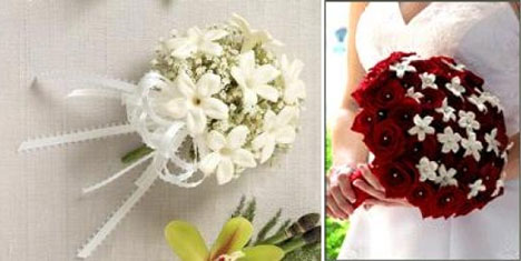 Brideca Guide Pros Amp Cons Of The Top 10 Wedding Flowers