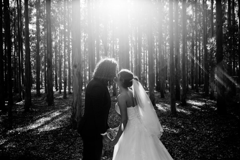 bride and groom kissing in the bush