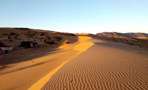 désert Massa - bridge à Agadir