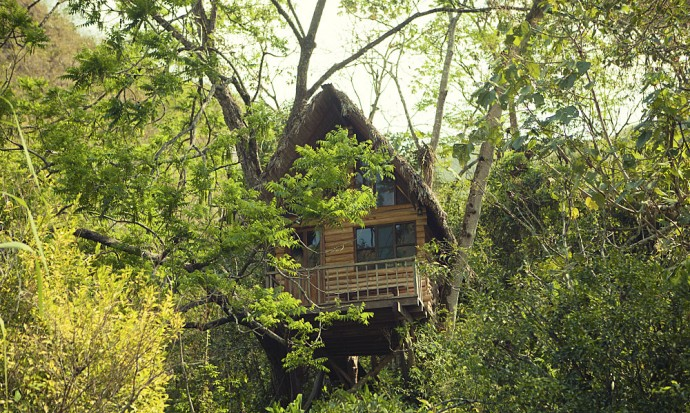 Treehouse at La Senda Verde, Bolivia