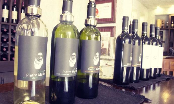 Cafayate Wine selection at Bodega Transito