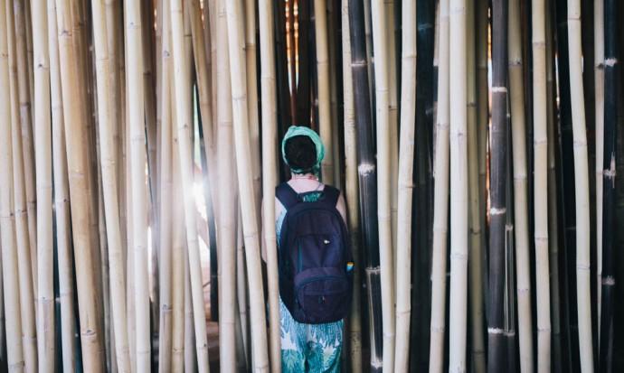 Victoria through the bamboo