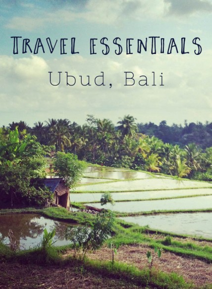 Travel Essentials Ubud