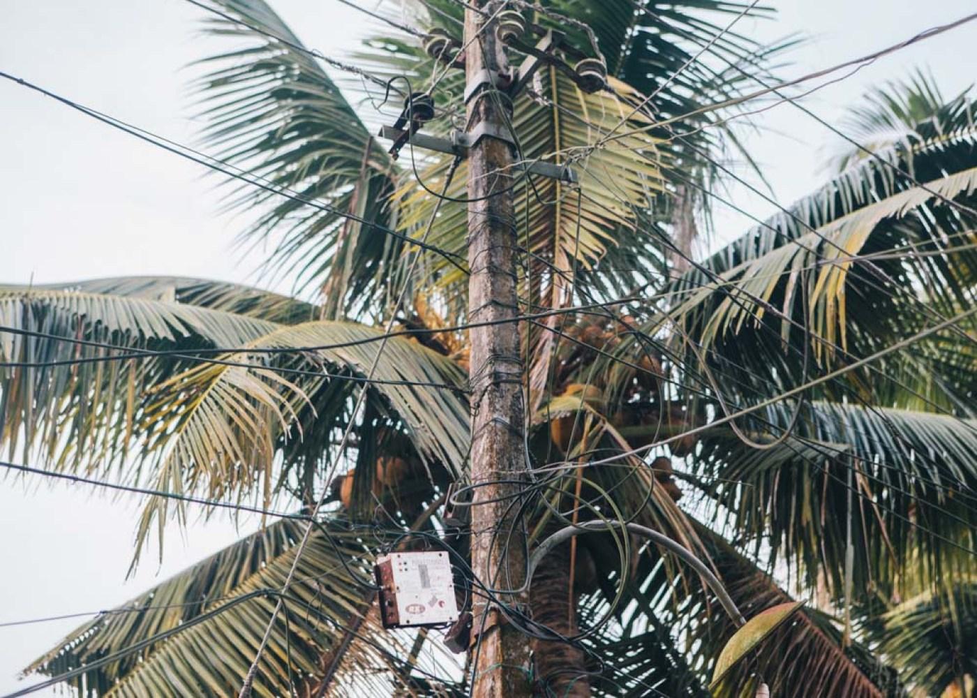 Photos from Kerala backwaters