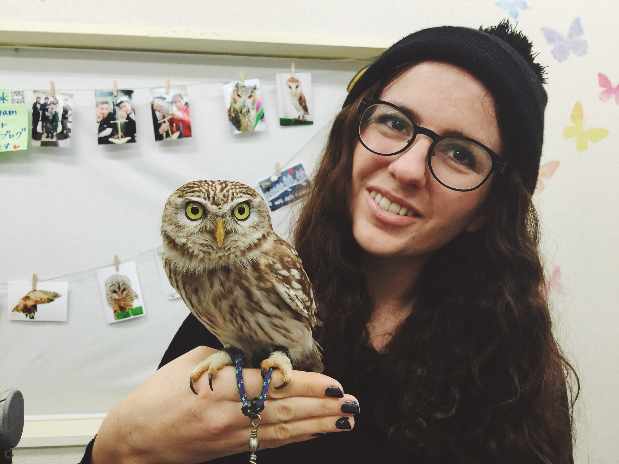Japan itinerary - Tokyo - Owl Cafe