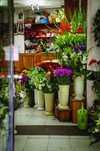 precious_citycenter_flowers_3047