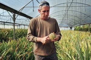 Israeli farmer