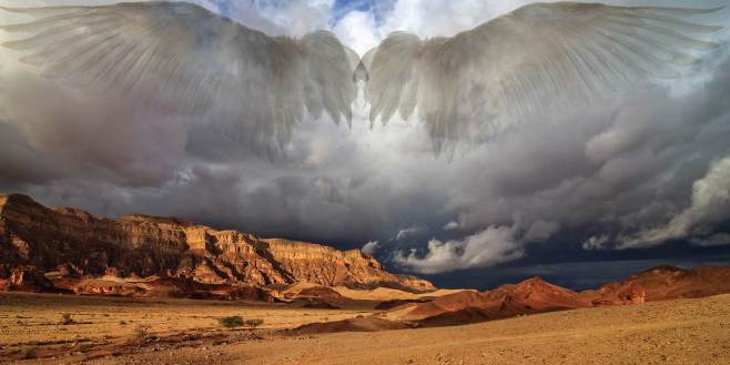 web-ss-timna-wings-504352195-johannes-rieble