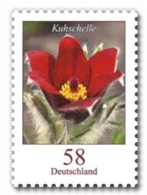 Deutschland Dauermarke Blumen 58 Cent Kuhschelle